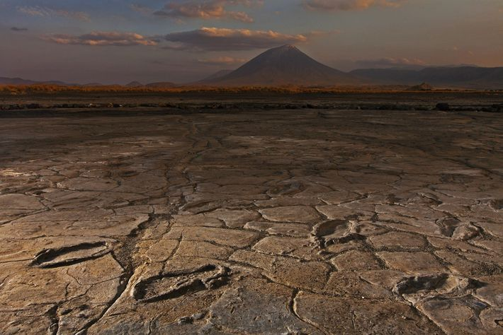 A party of more than a dozen adults and adolescents left footprints in volcanic ash at ...