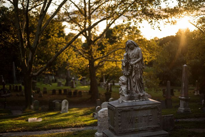 Founded in 1838 as one of America's first garden cemeteries, Green-Wood later inspired the creation of ...