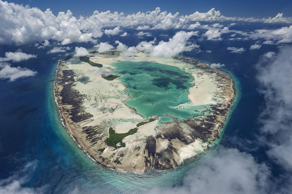 06-iucn-coral-reef
