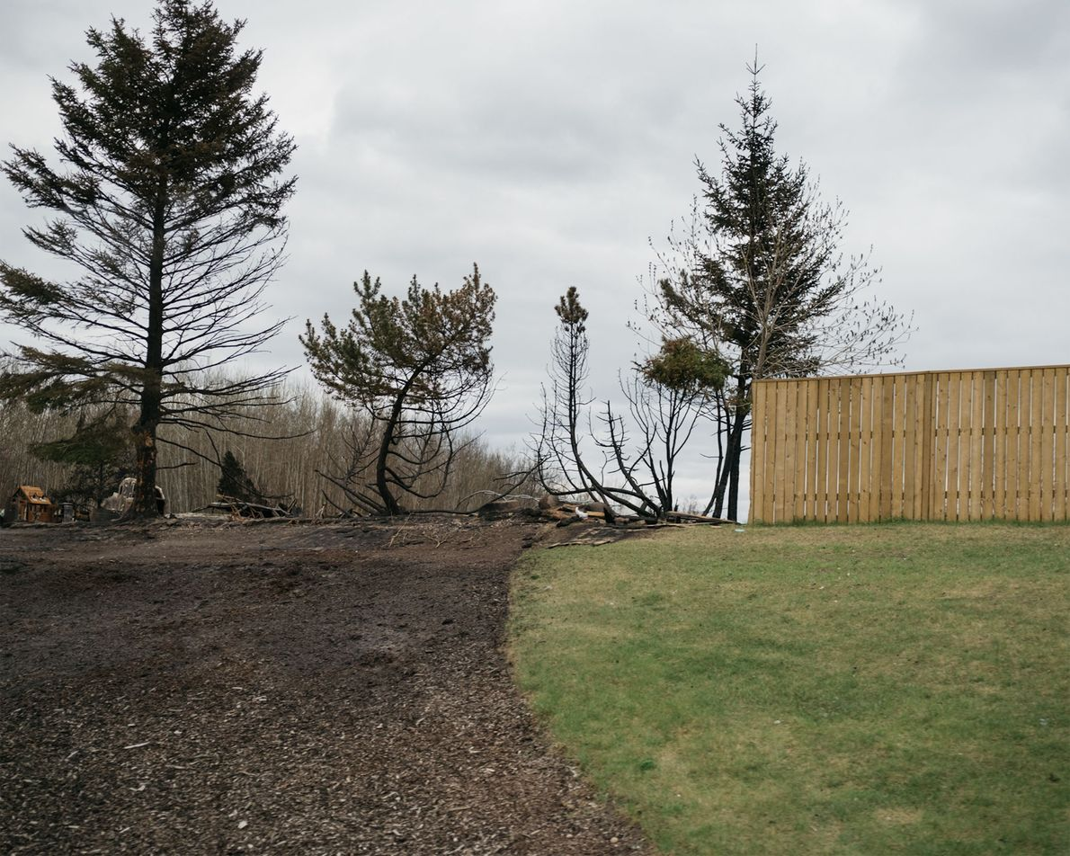 Here, the fire crept up to a lawn, but receded.