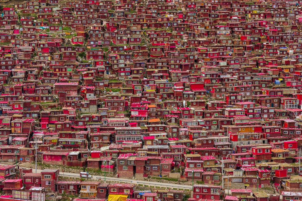 Picture of red homes for Buddhist monks in China
