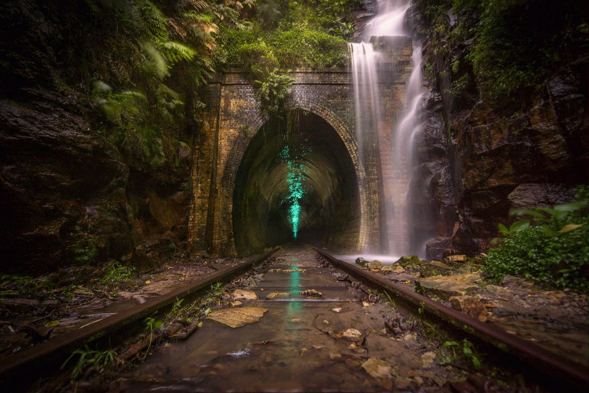 Picture of glow worms lighting up an abandoned train tunnel in Australia