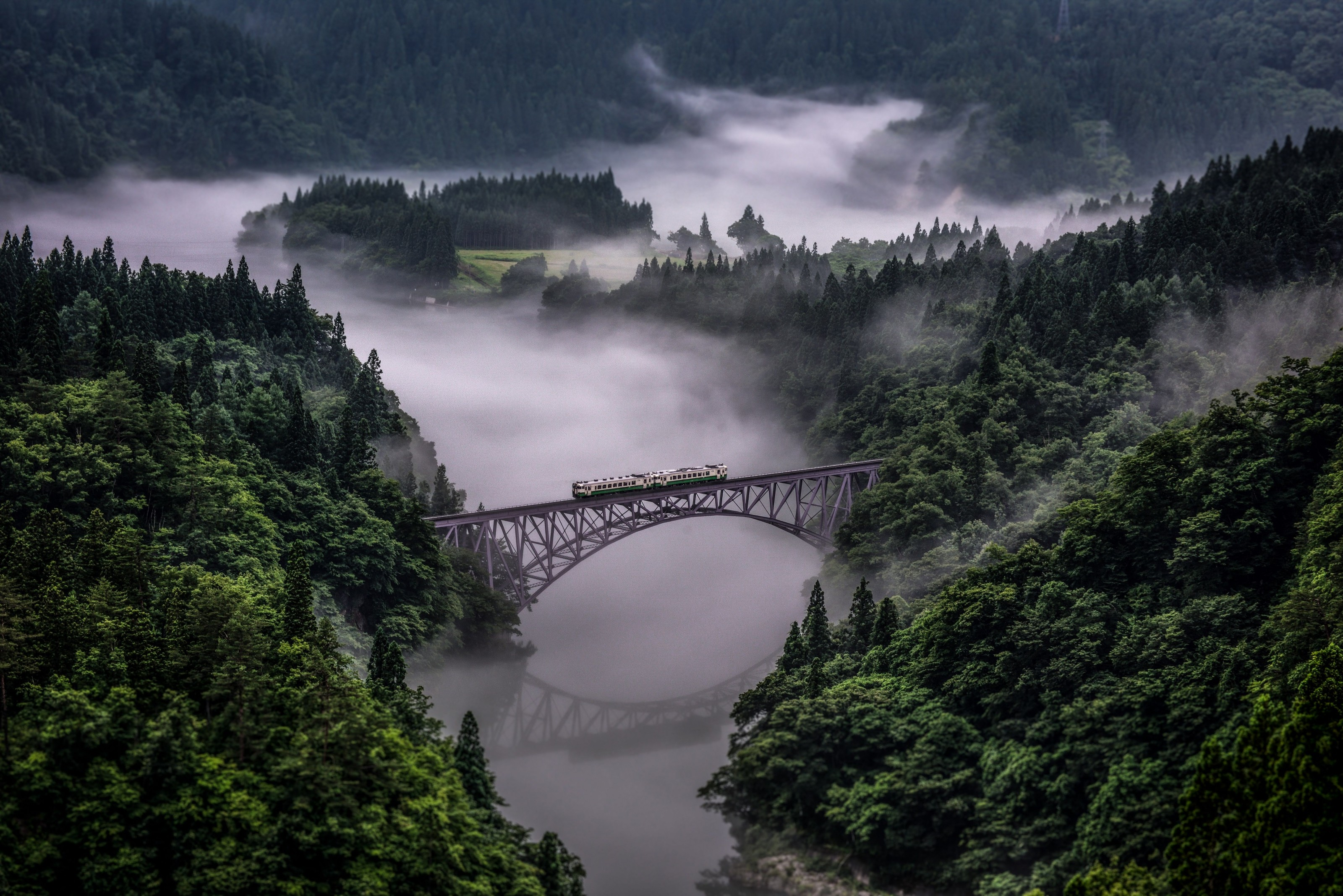Picture of a train on a bridge in a misty Japanese forest