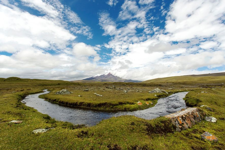 Nationaal Park Cotopaxi.
