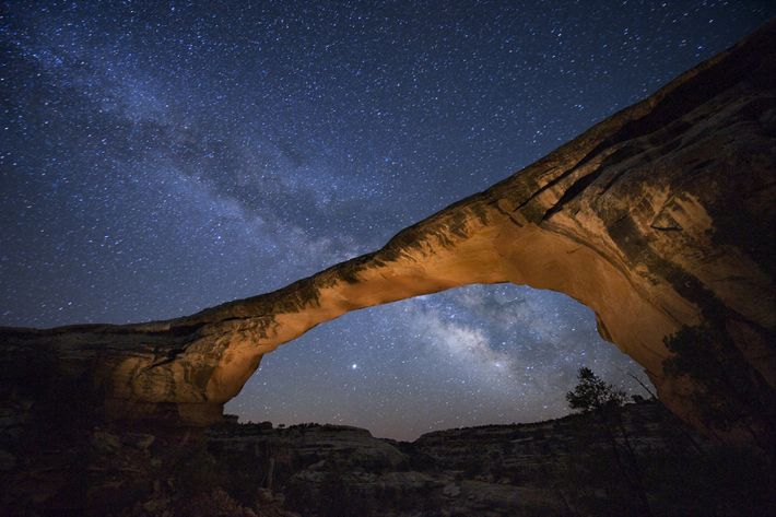 De sterrenhemel glinstert boven Owachomo Bridge in het Natural Bridges National Monument, Utah.