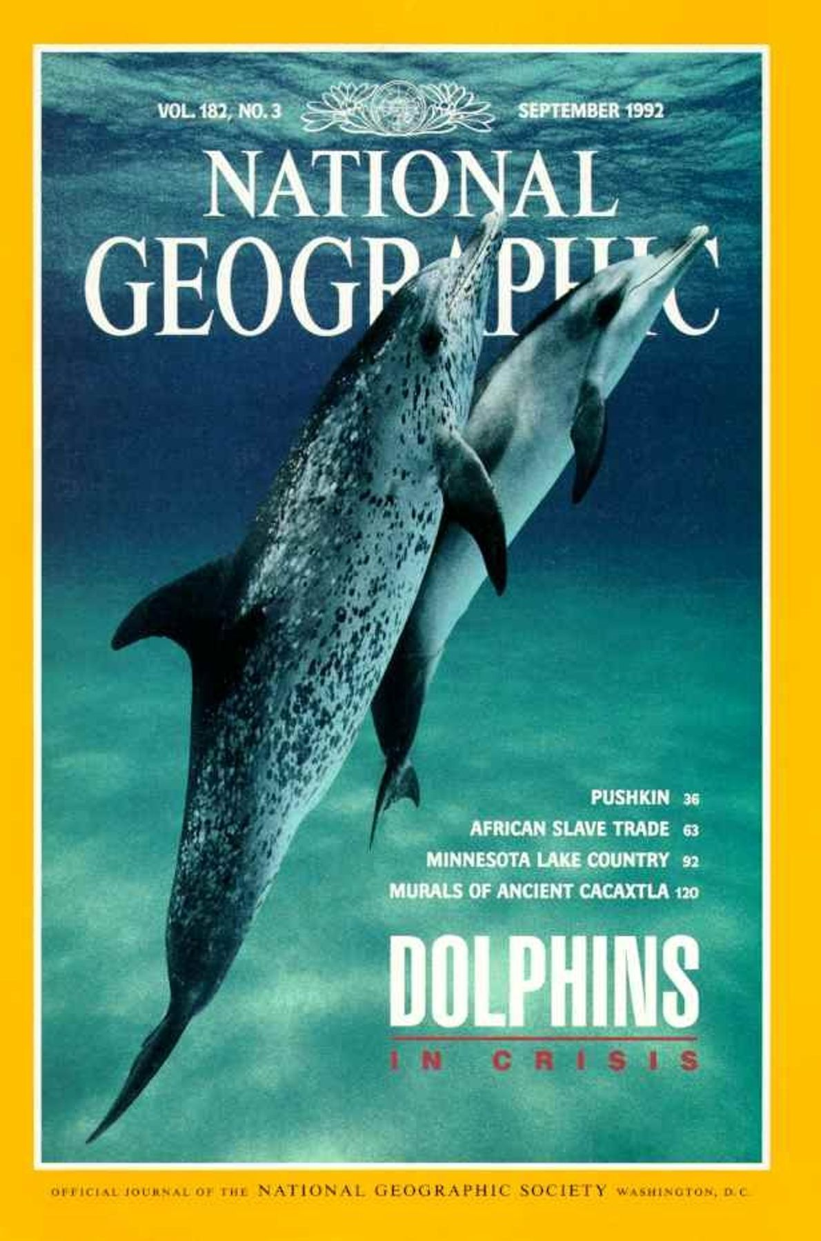 September 1992—Dolphins in Crisis