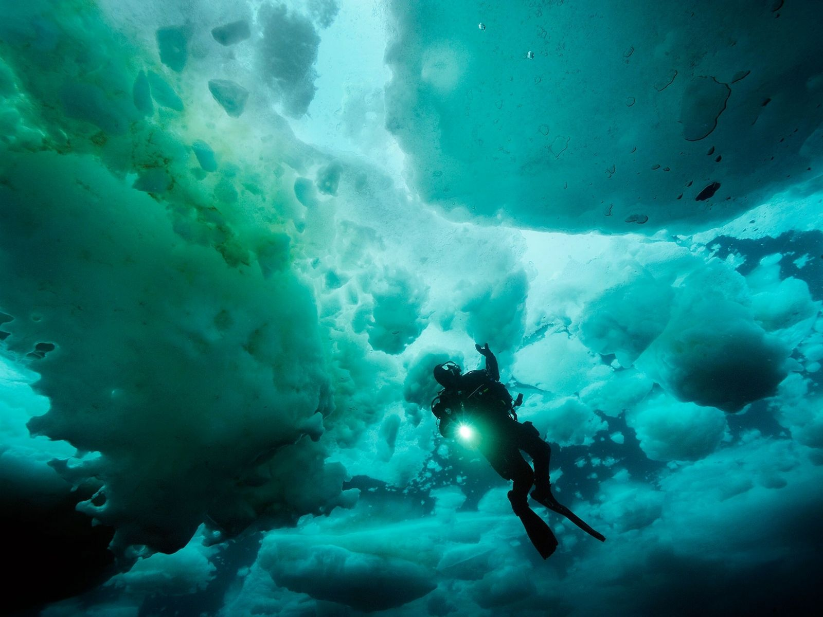 Brian Skerry, National Geographic Explorer